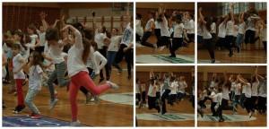 Dan-plesa (3)