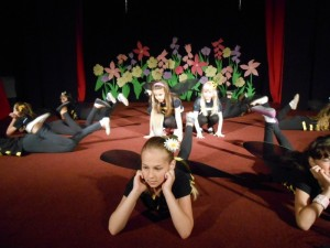 Predstave-zavrsne-predstave (5)